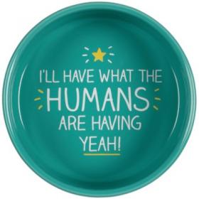 Humans Are Having Pet Bowl L